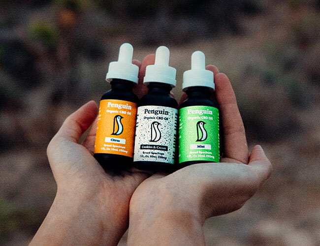 Penguin CBD Is Serious About Assisting You Chill Out