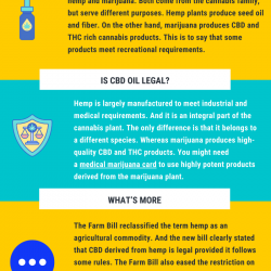 Do I Need A Medical Marijuana Recommendation To Buy CBD Oil?