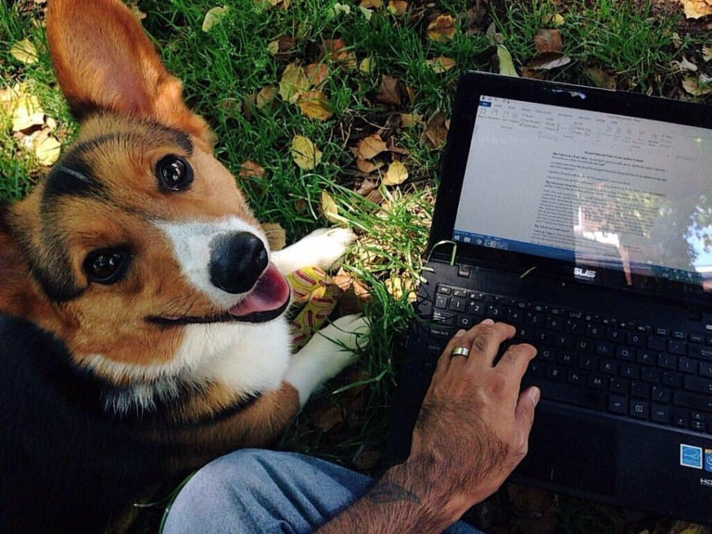 An author wrote a beautiful tribute to his late dog disguised as writing advice